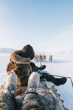 Hundeschlitten in Kangerlussuaq