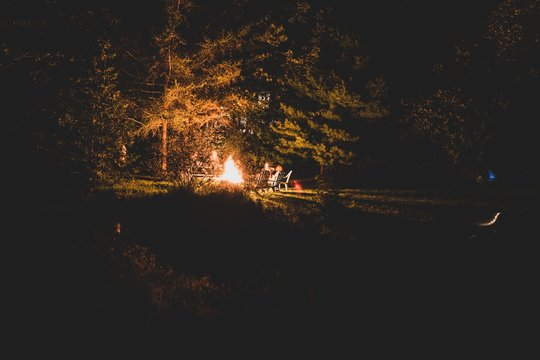 Group of friends having a backyard campfire surrounded with trees