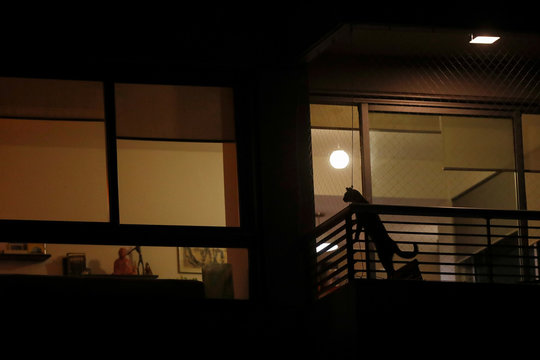 A cat is seen in a balcony during a citywide applause as people clap from their balconies and windows to show appreciation and support for the health workers as the spread of the coronavirus disease (COVID-19) continues, in Buenos Aires