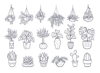 Collection of houseplants isolated on white background. Set of decorative indoor and office plants in pot. Vector doodle plants illustration. Set 1 of 2.