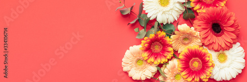 Happy Mother's Day, Women's Day, Valentine's Day or Birthday Living Coral and Lush Lava Banner. Floral flat lay greeting card with beautiful gerberas.