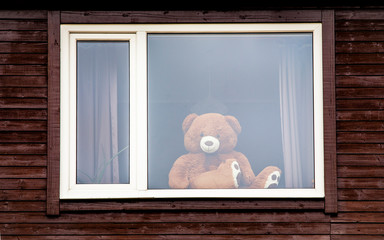Going on a bear hunt concept. Large stuffed toy teddy bear sit on window and looking outside. Photographed from outside on street. #putyourteddyout
