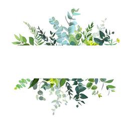 Fototapeta Horizontal botanical vector design banner obraz