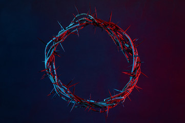 Crown Of Thorns On A Dark Background Fototapete