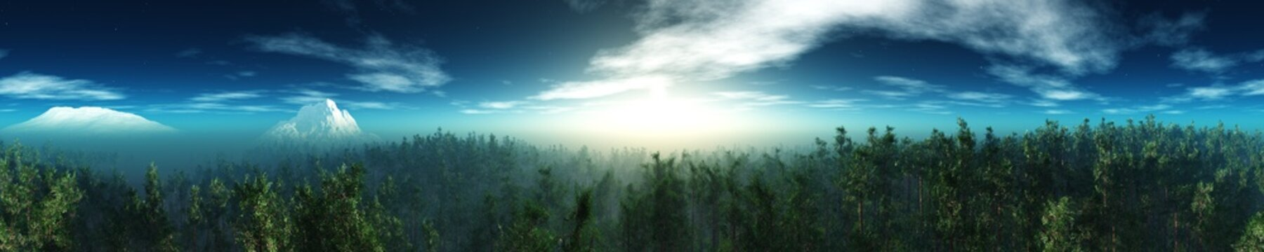 Panorama of the forest landscape, sunrise over the forest, sunset over the park, 3D rendering