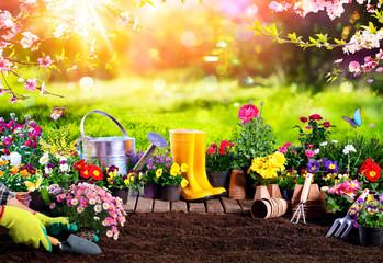 Wall Murals Garden Spring Gardening - Flowerpots An Equipment In Sunny Garden