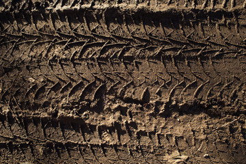 Texture of the trace from the car on the mud Wall mural
