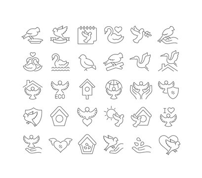 Vector Line Icons of Bird Day