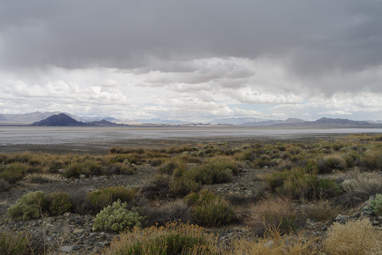 Soda lake looking east taken from Zzyzx Road in the Mojave desert taken during a rainy day.