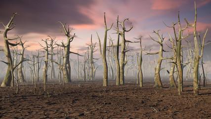 Foto auf AluDibond Lavendel dead forest, climate change crisis