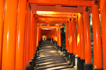 Torii gates in Fushimi Inari Shrine. Kyoto, Japan.