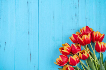 Foto op Canvas Tulp Tulip flower bunch, Mother's Day Design Concept - Beautiful Red, yellow bouquet isolated on blue wooden background, top view, flat lay, copy space