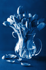 Fototapete - trend color of the year 2020 classic blue. beautiful tulip flowers bouquet in vase