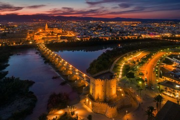 Wall Mural - Cordoba aerial view at night