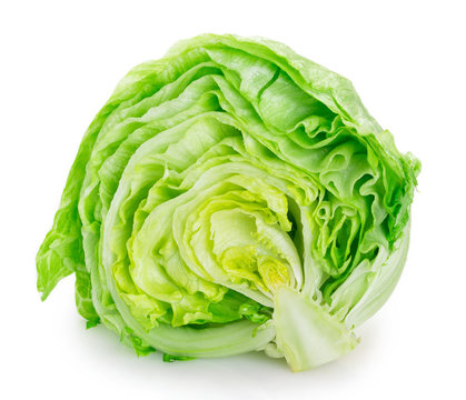 Fresh iceberg lettuce on white background