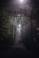 Empty foggy spooky alley street during night in city