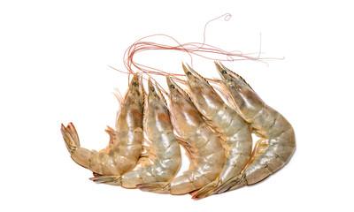 Fresh shrimp or prawn on white background, Raw prawns isolated on white background, fresh white shrimps in white  background.