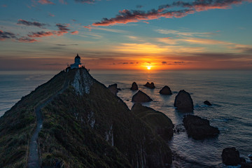 Nuggets of the nugget point in new zealand2 Wall mural