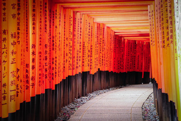 Torii gate, Kyoto, Japan : 2019 January 25. A lots of Torii gate is along the road to the top of mountain in Fushimi Inari shrine, the most famous landmark in Kyoto.