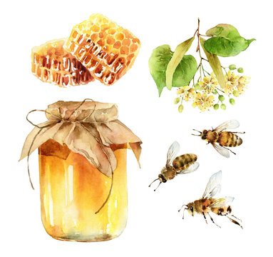 Watercolor honey set of design elements on white background