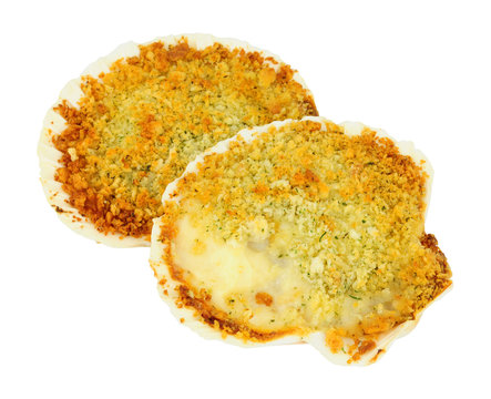 Coquille St Jacques scallop shellfish filled with white wine and cheese cream sauce, topped with breadcrumbs isolated on a white background
