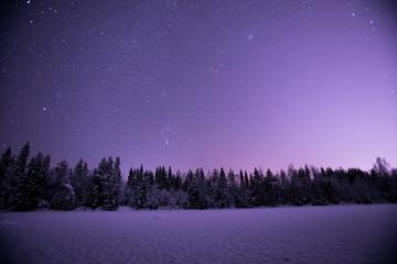 冬のフィンランド紫の空