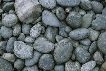 background of grey pebble stone  Wall mural