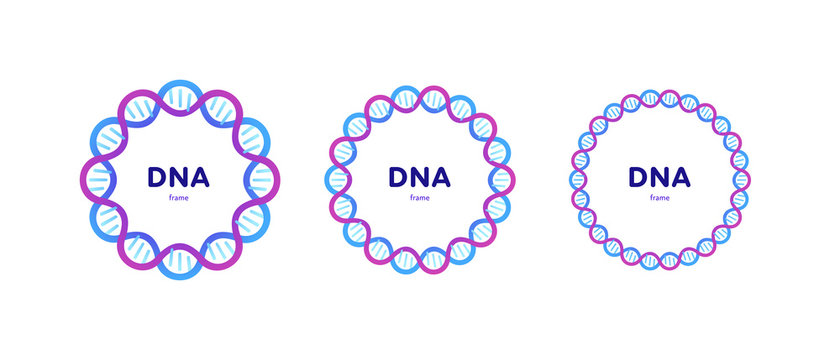 Genetic abstract concept. Vector color flat illustration. Set of circle frame banner of DNA helix and copy space isolated on white. Blue pink gradient Design for gene science, medicine advertisment.