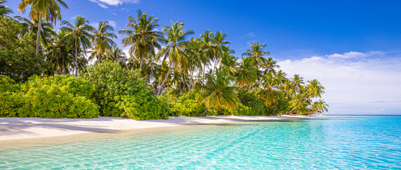 Wall Mural - Tropical beach background as summer landscape with white sand and coco palm trees close to calm sea for beach banner. Perfect beach scene vacation and summer holiday concept.