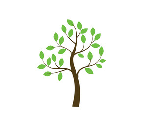 Vector tree emblem. Icon, logo tree.ть