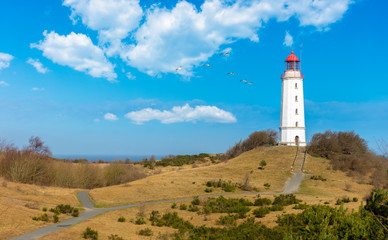 The Dornbusch lighthouse on the German island of Hiddensee in the Baltic Sea. It is a beautiful winter day with blue sky and clouds. A flock of seagulls flies in the sky.