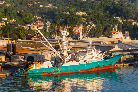 Victoria, Mahe island, Seychelles - December 15, 2015: Modern industrial fishing vessel TORRE GIULIA in the morning sun in the harbor of Port Victoria, Mahe island, Seychelles.