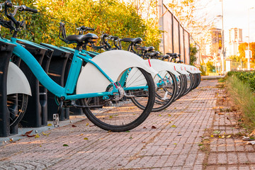 Rental bicycles parked in row at public park