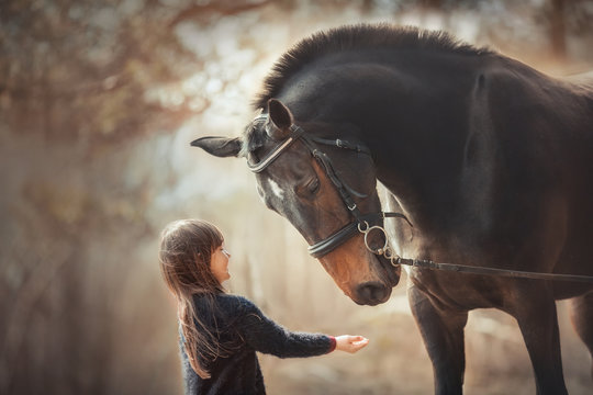Little girl with horse at summer evening day