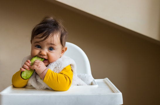 Healthy cute caucasian baby boy have, eat vegan raw supplementary food at home in his highchair. Vegan infant concept.