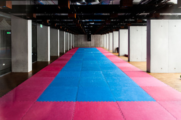 Gymnasium for martial arts training with tatami mat