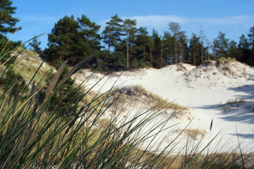 Plaża Lubiatowo Bałtyk piasek woda