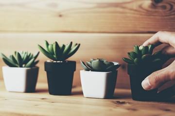 観葉植物と人物 Fototapete