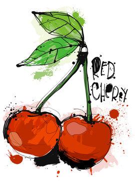Red Cherry SKetch