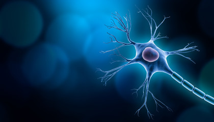 Neuron cell body with nucleus design, 3D rendering illustration with copy space and blue background. Neuroscience, neurology, biology, psychology, medicine, microbiology, scientific research concepts.