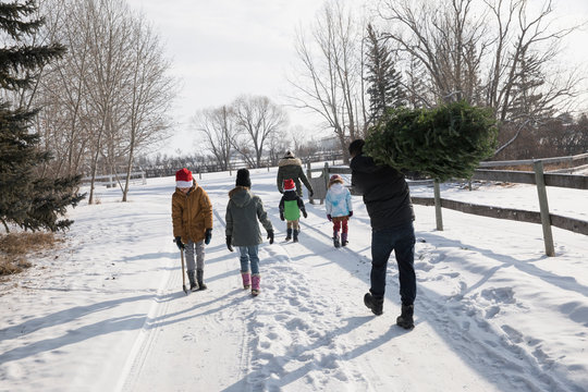 Family carrying Christmas tree on snowy road