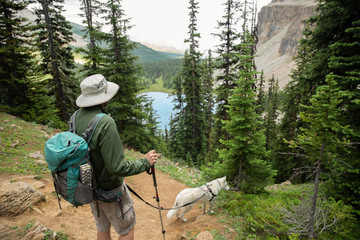 Man with dog hiking in woods overlooking lake