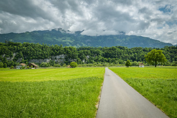 Wall Mural - Countryside road leading to Wichelsee lake close to Sarnen, Switzerland