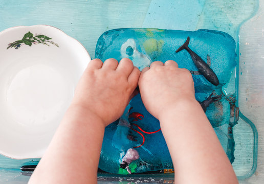 A small child is trying to get animal figures out of ice. The development of children's motor skills using the touch box