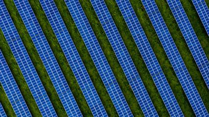 Aerial drone photo of a photovoltaic solar cell farm. Dark blue solar panel array against contrasting green grass. Fotoväggar