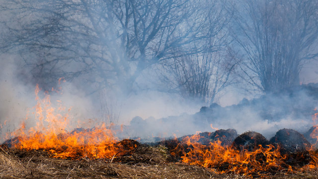 Fire in the mountains and field