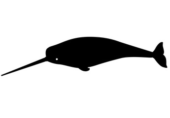 Narwhal - marine mammal - vector silhouette for logo or sign. A male narwhal with a long tusk is an underwater animal silhouette. Narwhal ocean dweller black silhouette for pictogram.
