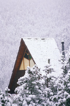A-frame cabin in snowy forest, Boulder, CO