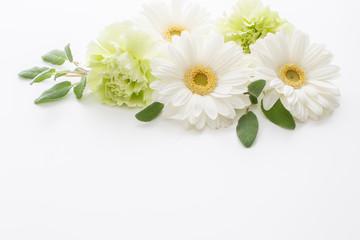 白い花 ガーベラの招待状