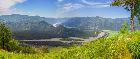 Wall Mural - Tourism in Altai, Russia. View of the valley and the river from the mountain. Panoramic view.